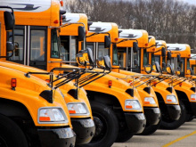 Blue Bird Buses